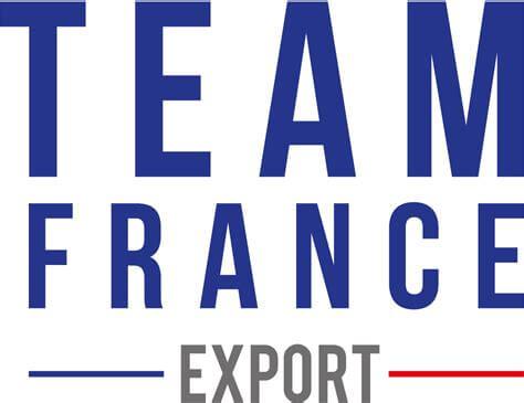 https://exportpulse.com/wp-content/uploads/2021/04/TFE-logo-.jpeg